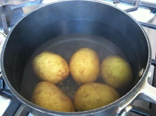 2013-07-01 potatoes in pot